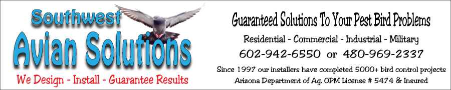 banner for Mesa Az southwest avian solution pigeon control bird control specialists in Arizona